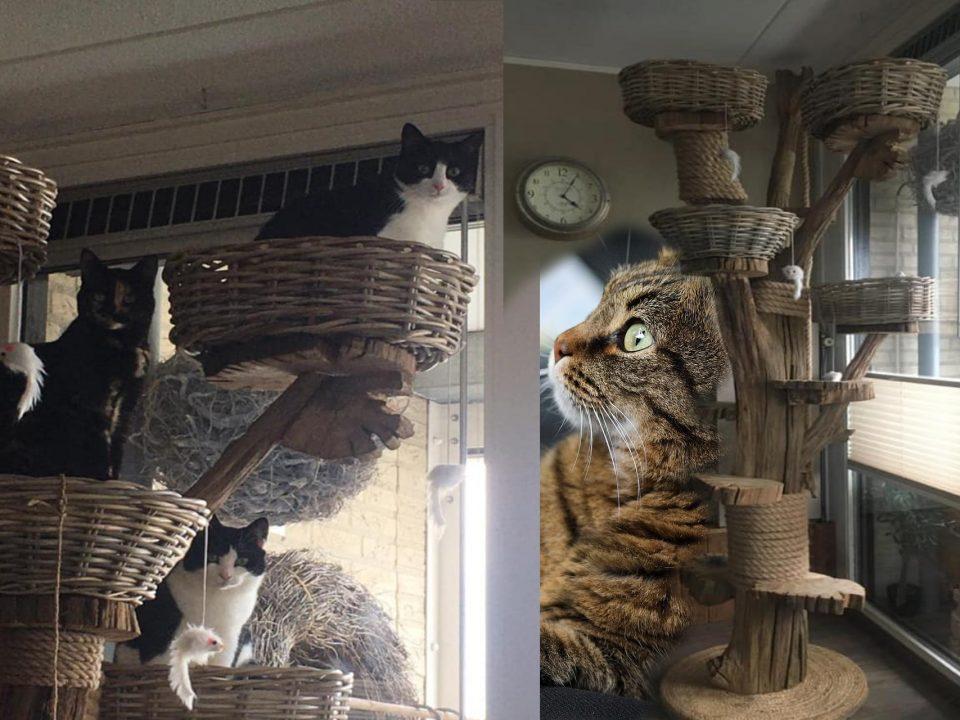 kattenboom zelf maken
